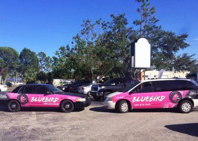 This Creative Bluebird Taxi Breast Cancer Vehicle Wrap